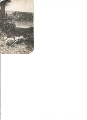 Frederick Harry James Gowers, 172 Field Regiment, Royal Artillary and was a Gunner
