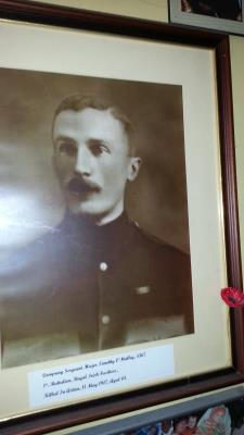 Timothy O'Malley, 5367, Company Sergeant Major,  !st.  Battalion, Royal Irish Fusiliers.  Killed In Action on May 1917